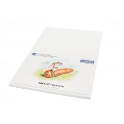 Kreslící karton 250g - 30 archů