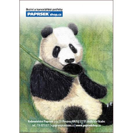 Ordinační kartička PAPRSEK® kód 44