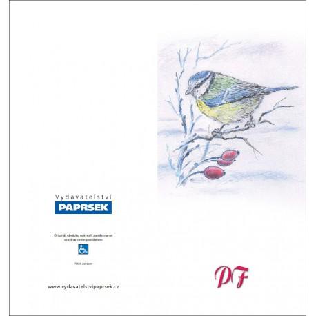 PF PAPRSEK® - otevírací DL bez textu včetně obálky - kód: 054