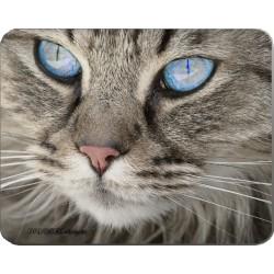 Podložka pod myš 190 x 240 mm - kočka 2
