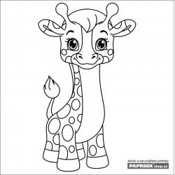 Omalovánka karta 149x149 mm - žirafa