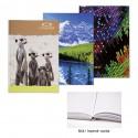 Záznamní kniha CONCORDE A4 linka, 96 listů