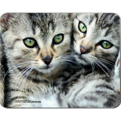 Podložka pod myš 190 x 240 mm - koťata