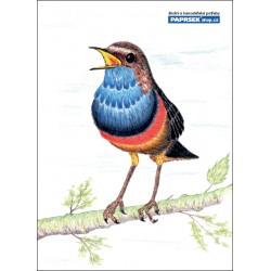 Poznámkový blok A6 PAPRSEK®, lepený, čistý, 50 listů, ptáček